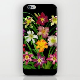 Display of daylilies II on blck iPhone Skin