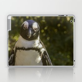 Penguin Portrait Laptop & iPad Skin