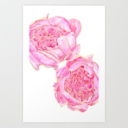 Pink and gold peonies, Sally Art Print