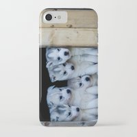 puppies iPhone & iPod Cases featuring Husky puppies by Nathalie Photos