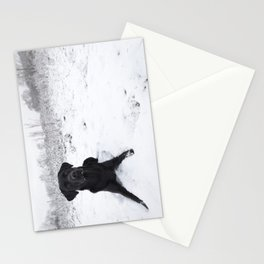 Black Labrador in the snow Stationery Cards