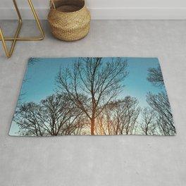 Leafless Tree on Sunset Rug