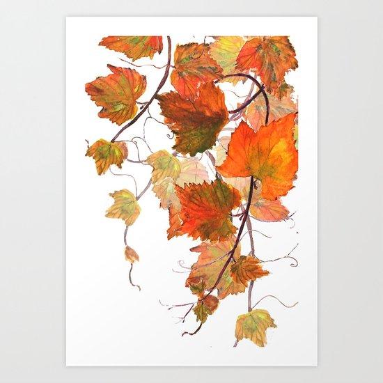 orange grapevine 2 Art Print