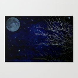 A Cold Winter Night Canvas Print