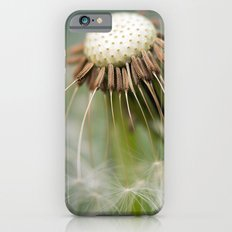 Dandelion Wish iPhone 6s Slim Case