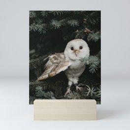Owl in The Tree Mini Art Print