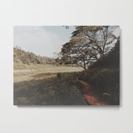 Into the field  Metal Print