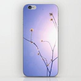 Delicate Things iPhone Skin