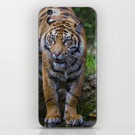 My Water  iPhone Skin