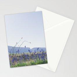 Bluebonnets, Spring in Big Bend National Park Stationery Cards