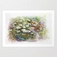 Dora Crowell's Summer Daisies Digital Watercolor Art Print