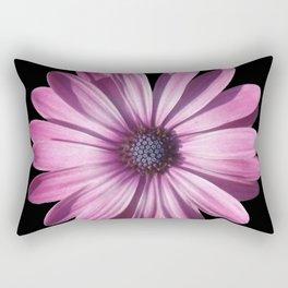 Spectacular African Daisy Isolated On Black Rectangular Pillow