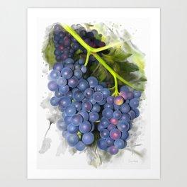 Concord grape Art Print