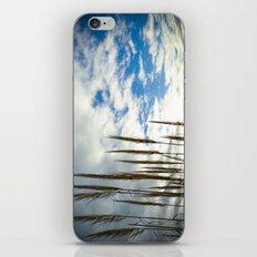 Coronado California Seagrass iPhone & iPod Skin