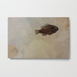 Brown impression of a fish fossil in rock Metal Print