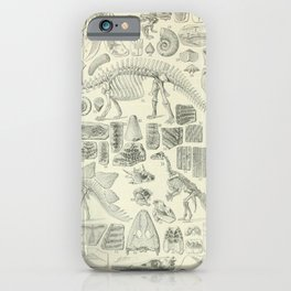 Fossil Chart iPhone Case