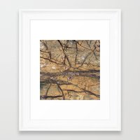 white marble Framed Art Prints featuring Marble by Santo Sagese