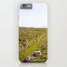 Sheeps in Iceland Slim Case iPhone 6s