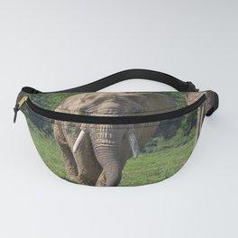 Elephant Heard Charging Fanny Pack