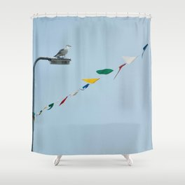 Welsh seagull and bunting Shower Curtain