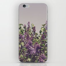 Wild Lilacs iPhone & iPod Skin