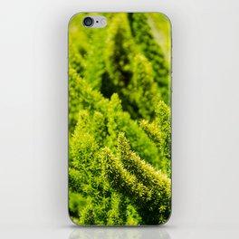 Green world iPhone Skin
