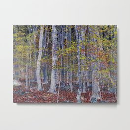 You Hiked while I Stood Still Metal Print