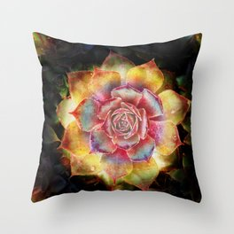 Sempervivum stone plant Throw Pillow