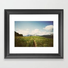 Summer Wander Framed Art Print