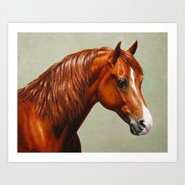 Chestnut Morgan Horse Art Print