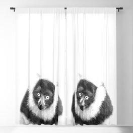 Black and white lemur animal portrait Blackout Curtain