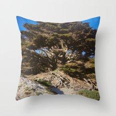 Ancient Wisdom, the California Monterey Cypress Tree Throw Pillow