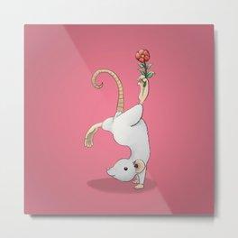 Yoga Rat, Day 9 Metal Print