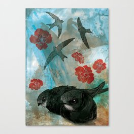 Common Swifts Canvas Print
