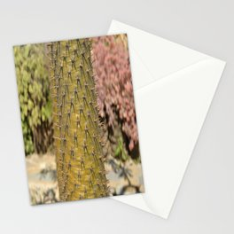 Pachypodium lamerei  Stationery Cards