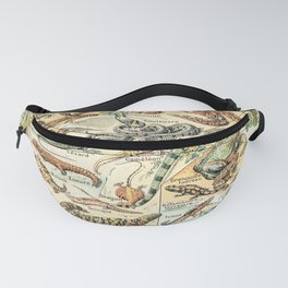 Reptiles II by Adolphe Millot // XL 19th Century Snakes Lizards Alligators Science Textbook Artwork Fanny Pack