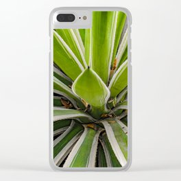 Tropical Plant Detail, Botanic Garden, Guayaquil Clear iPhone Case