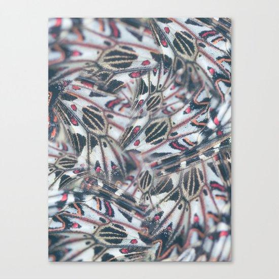 Butterflies Print Canvas Print
