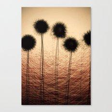 datadoodle 008 Canvas Print