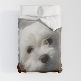 Cute Maltese asking for a treat Duvet Cover