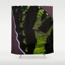 I dreamed I was a butterfly, flitting around in the sky; then I awoke. Shower Curtain