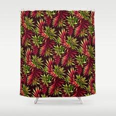 Aechmea Fasciata - Green/Pink Shower Curtain
