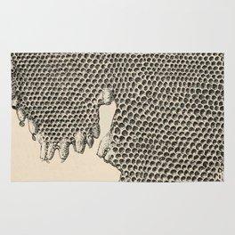 Honeycomb Frame Rug