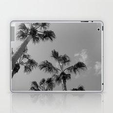 Palm Tress, Fuerteventura. Laptop & iPad Skin