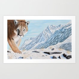 Mountain Lion in the Rockies Art Print