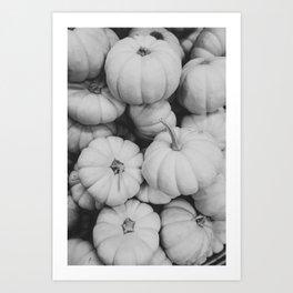 Black and White Mini Pumpkins Art Print
