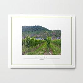 Vineyard near Moselle Metal Print