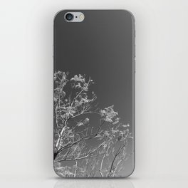 Nature and The City iPhone Skin