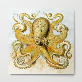 Octopus -  Design -  Orange -  Arts And Crafts -  Sand - Vintage - Vintage illustration. Retro décor. Metal Print