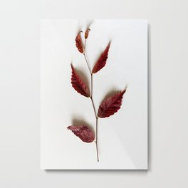 Twig of Autumn Metal Print